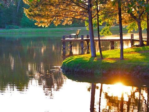 Eagle Creek Escape - Lakeview Cabins